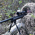 Sniper Dressed In A Ghillie Suit by Stocktrek Images