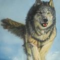 Snodog - Watercolor by GD Rankin