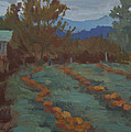 Snohomish Pumpkin Patch by Diane McClary