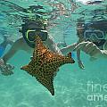 Snorkellers Holding A Four Legs Starfish by Sami Sarkis