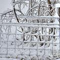 Snow - Ice - Fence by M Dale