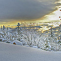 Snow And The Sierra Highway 88 by SC Heffner