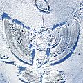 Snow Angel by Larry Hunter