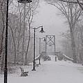 Snow At Bulls Island - 05 by Christopher Plummer