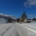 Snow At Hunter by Donna Cavanaugh
