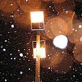 Snow At Night - 1779 by Sandy Tolman
