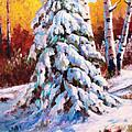 Snow Blanket by David G Paul