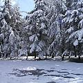 Snow by Boultifat Abdelhak badou
