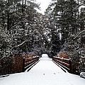 Snow Bridge by Nicole Parks