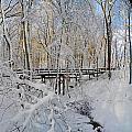 Snow Bridge by Raymond Salani III