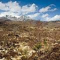 Snow Capped Sgurr Nan Fhir Duibhe by David Head