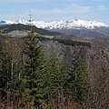 Snow Capped View by Teresa A Lang