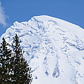 Snow Cone Mountain Top by Tikvah's Hope