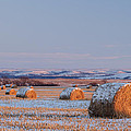 Snow Covered Bales by Scott Bean