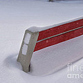 Snow Covered Bench by Thomas Woolworth
