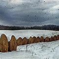 Snow Covered Hay Bales by Kathy Jennings
