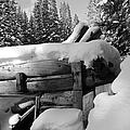 Snow Covered History by Tonya Hance