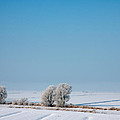 Snow Covered Landscape by Jan Brons