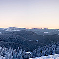 Snow Covered Trees On A Hill, Belchen by Panoramic Images