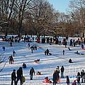 Snow Day - Fun Day At The Park by Dora Sofia Caputo Photographic Design and Fine Art