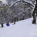 Snow Day In The Park by Madeline Ellis