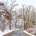 Snow Dusted Colorado Scenic Drive by James BO  Insogna