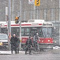 Snow Falling In Toronto by Alfred Ng