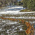 Snow Fence by Photographic Art by Russel Ray Photos