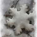Snow Flake 01 Photo Art by Thomas Woolworth