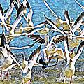 Snow Geese Panic by Tom Janca