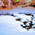Snow In Color by Eva Kaufman