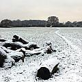 Snow In Surrey England by Julia Gavin