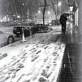 Snow In The City by Miriam Danar