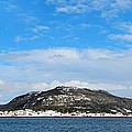 Snow In The Harbour by Barbara Griffin