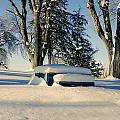 Snow In The Park by Gloria Pasko
