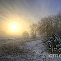 Snow Landscape Sunrise by Yhun Suarez