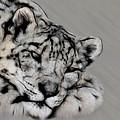 Snow Leopard Digital Art by Ernie Echols