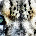 Snow Leopard Eyes by Angelina Vick