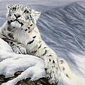 Snow Leopard by Lucie Bilodeau