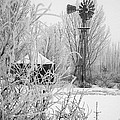 Snow Mill by Laurie Purcell