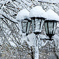 Snow On Lamps by Jessie Parker