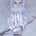 Snow Owl by Jamie Frier