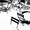 Snow Picnic by Diana Angstadt