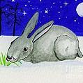 Snow Rabbit by Lori Ziemba