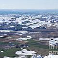 Snow Remnants On The Palouse by Sharon Elliott