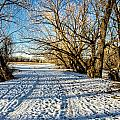 Snow Road by Baywest Imaging