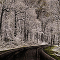 Snow Road by Tom  Reed