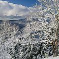 Snow Scene At Berry Summit by Greg Nyquist