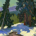 Snow Shadows Mammoth Mountain by Diane McClary