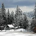 Snow Storm by Glen Wilkerson